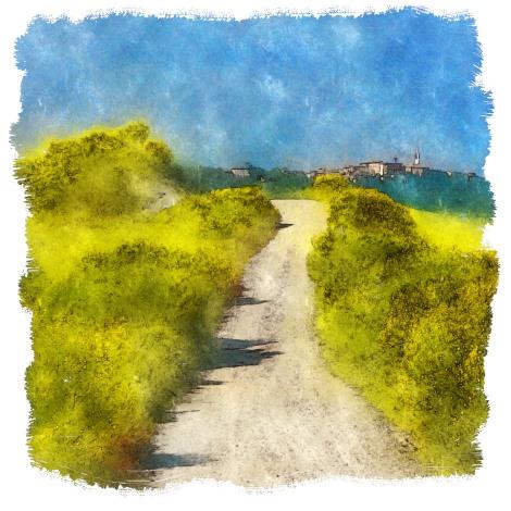 Le joli chemin des genêts (final)